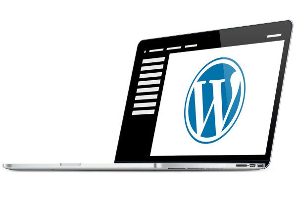 Simplify complicated things To create websites, we use WordPress' proven content management system (CMS), which is used by more than 80,000,000 companies a wordpress notebook